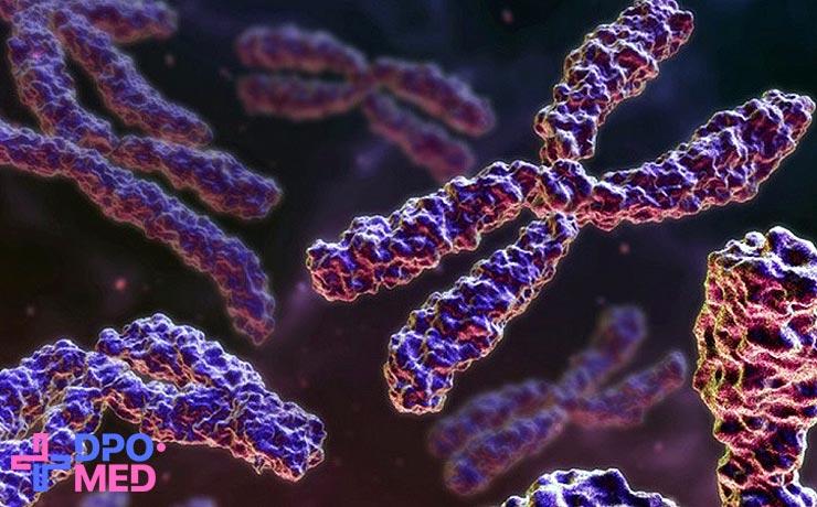 Курсы по генетике для медиков с высшим образованием, удалённое обучение