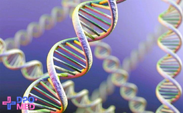 Дистанционные курсы по радиационной генетике