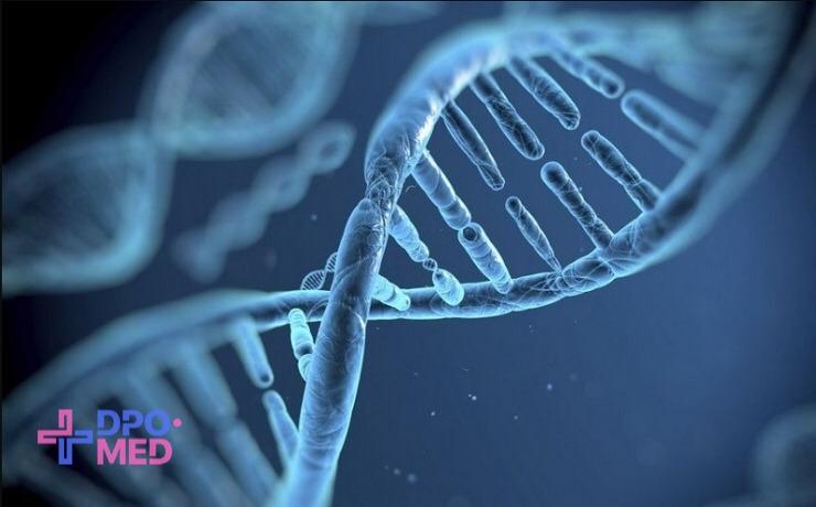 Повышение квалификации - по генетике