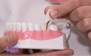 Повышение квалификации - по ортопедической стоматологии